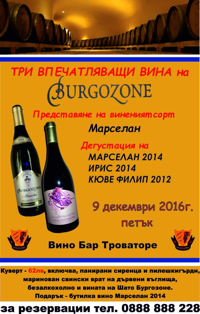 Burgozone1